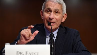 Photo of 'The death toll would be enormous,' Fauci says of herd immunity to coronavirus in the U.S. | CNBC
