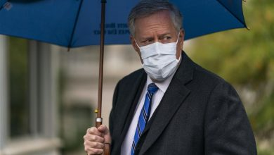 Photo of Mark Meadows Makes Startling COVID Comment | Newser