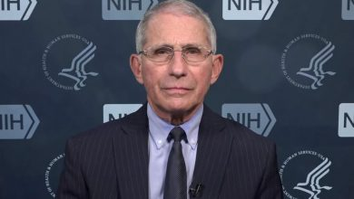 Photo of Fauci says findings on a potential coronavirus vaccine are expected by early December | CNN